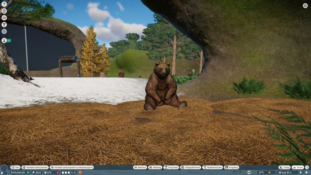 Wybieg niedźwiedzia
