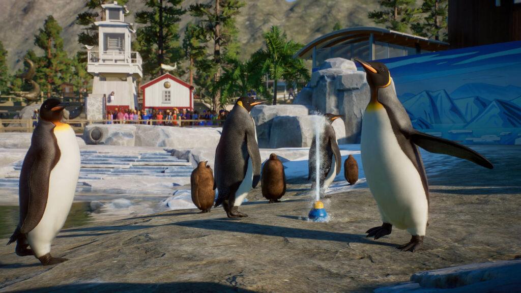 Pingwiny w dodatku Planet Zoo Wodny Świat